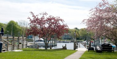 Greenwich Bay Marina-Greenwich Bay Marina in Warwick, Rhode Island (medium sized photo)